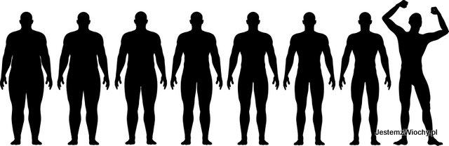 Ja zmienia się sylwetka w trakcie stosowania odpowiedniej diety, czyli dokąd zmierzam